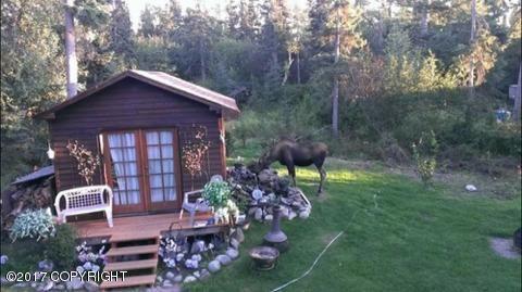 15641 Jensen Cir., Anchorage, AK 99516 Photo 53