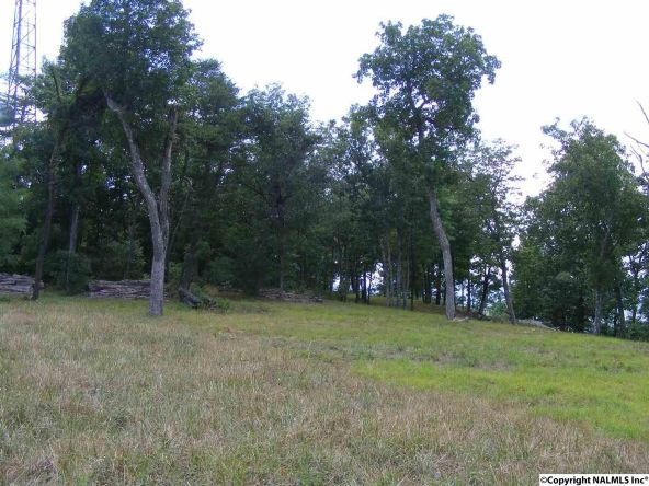 23350 N. County Rd. 89, Mentone, AL 35984 Photo 11