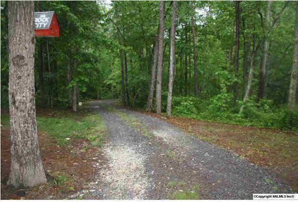 840 County Rd. 106, Mentone, AL 35984 Photo 1