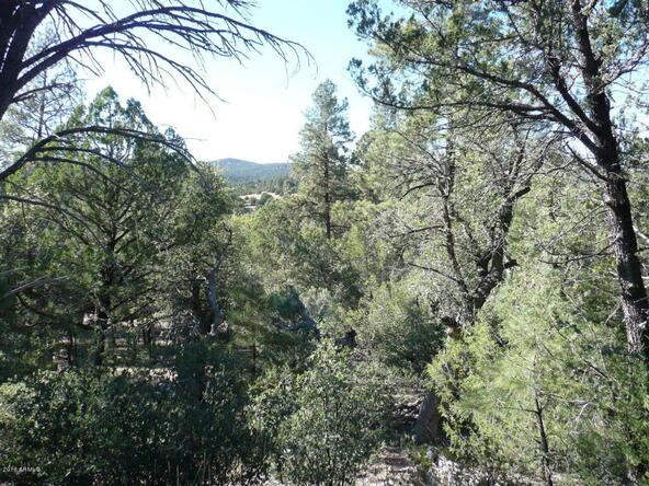 8b N. Chamberlain Trail, Young, AZ 85554 Photo 30