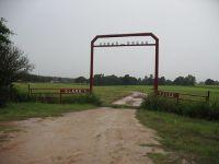 Home for sale: 3981 Fm 3016, Grapeland, TX 75944