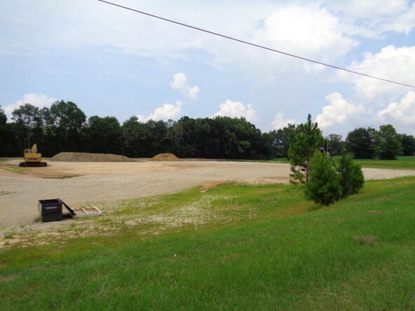 390 Glen Lawrence/ Hwy. 84, Cowarts, AL 36321 Photo 22