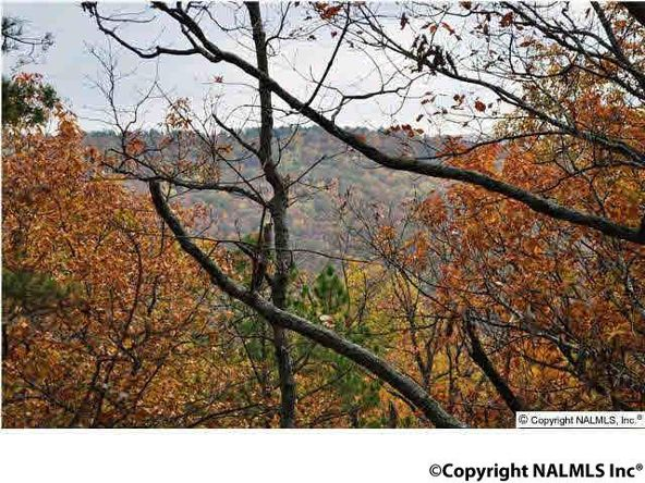 3 South Bluff Trail, Huntsville, AL 35803 Photo 3