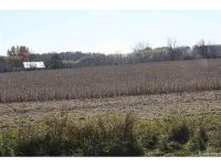 Home for sale: Burt - Lot B, Allenton, MI 48002
