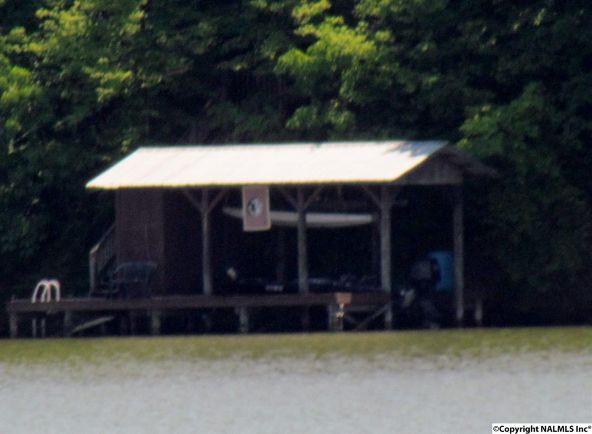 1005 County Rd. 509, Cedar Bluff, AL 35959 Photo 25