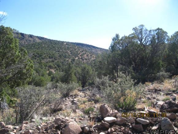 00 N. Willows Ranch Rd., Kingman, AZ 86401 Photo 7