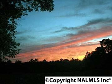 1172 County Rd. 639, Mentone, AL 35984 Photo 4
