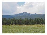 Home for sale: 000 Wagon Trail, Buena Vista, CO 81211