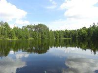 Home for sale: Scoter Lake Squaw Lake, Republic, MI 49879