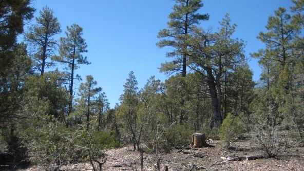 1870 S. Pleasant View Dr., Show Low, AZ 85901 Photo 7