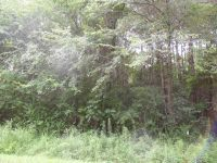 Home for sale: Valley Grove Rd., Cedartown, GA 30125