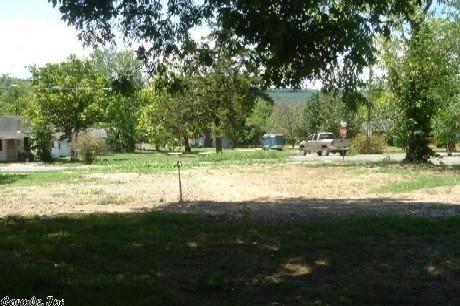 517 Jackson St., Mountain View, AR 72560 Photo 3