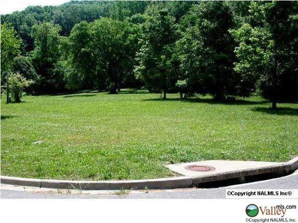 111 Lake Creek Dr., Guntersville, AL 35976 Photo 16