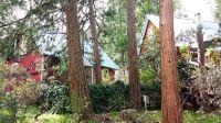 Home for sale: 41660 Merriman Ln., Auberry, CA 93602