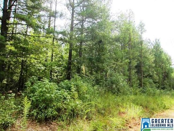 3.05 Acres Thomas Ln., Ashland, AL 36251 Photo 4