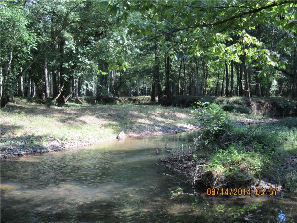 1865 County Rd. 99, Gaylesville, AL 35973 Photo 19
