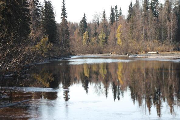 68460 S. Denali Vista Dr., Willow, AK 99688 Photo 4