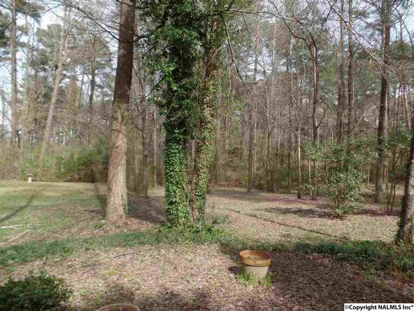 1835 Beech Hollow Rd., Southside, AL 35907 Photo 34