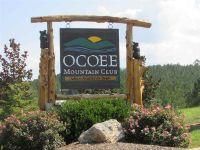 Home for sale: 209 Mountain View Cir., Ocoee, TN 37361