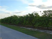 Home for sale: Garrard Rd., Fort Meade, FL 33841