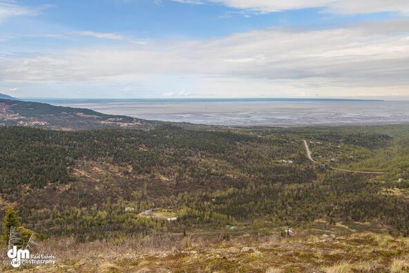 9820 Meadow Rd., Anchorage, AK 99516 Photo 13