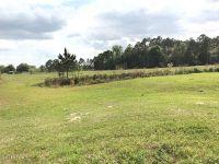 Home for sale: 0000 Ivy Bush Ln., Bonifay, FL 32425