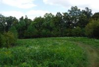 Home for sale: 16 .40 Ac. Ford Rd., Baxter, TN 38544