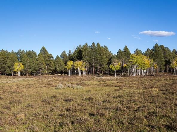 Tbd S. Sage Grouse Rd., Lot 10, Placerville, CO 81430 Photo 16