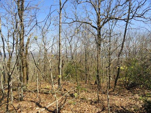 1.4 Ac Mt Riante Rd., Hot Springs, AR 71913 Photo 5
