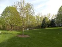 Home for sale: 705 Pheasant Trail, Saint Charles, IL 60174