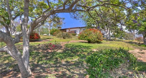 33781 Valle Rd., San Juan Capistrano, CA 92675 Photo 5
