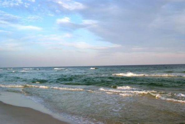 4851 Wharf Pkwy, Orange Beach, AL 36535 Photo 28