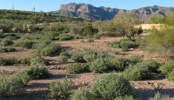 3351 S. Petroglyph Trail, Gold Canyon, AZ 85118 Photo 2