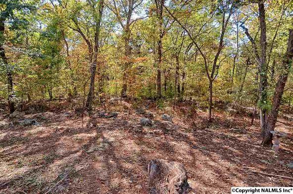 7804 Foxfire Dr., Huntsville, AL 35802 Photo 32