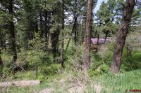 Home for sale: 625 Alpine Forest Dr., Bayfield, CO 81122