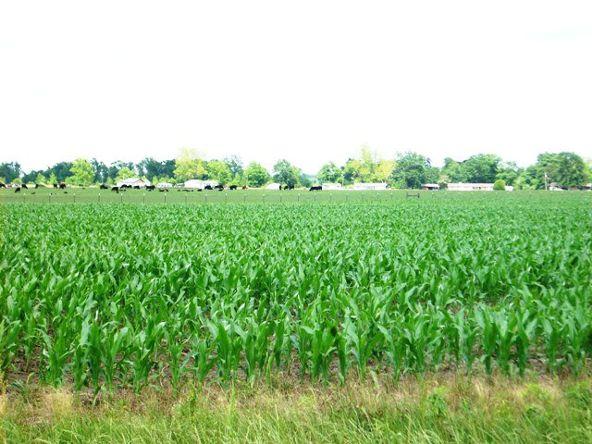 5200 Jack Springs Rd., Atmore, AL 36502 Photo 23