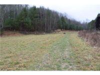 Home for sale: 9999 Lotties Creek Rd., Burnsville, NC 28714