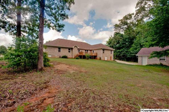 133 Turtle Bend Dr., Toney, AL 35773 Photo 37