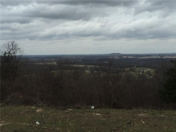 21354 Fire Tower Rd., Elkins, AR 72727 Photo 27