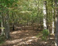 Home for sale: Coontail Rd., Aberdeen, MS 39730