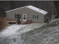 Home for sale: 301 Swartlick Rd., Owego, NY 13827
