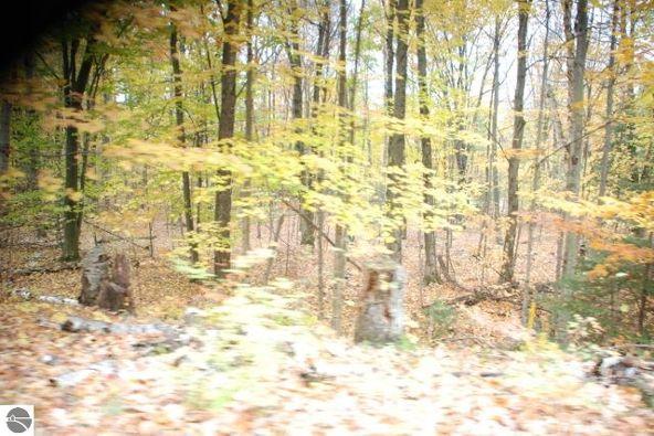 19 Balsam Trail, Kewadin, MI 49648 Photo 4