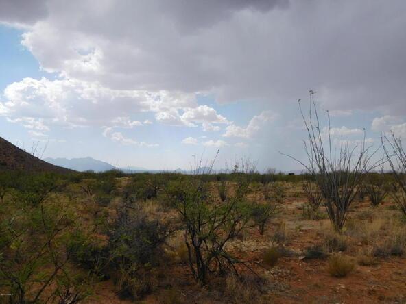 16705 S. Sierrita Mountain, Tucson, AZ 85736 Photo 26