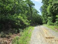 Home for sale: 18h Roxies Rd., Dawsonville, GA 30534