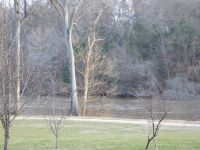 Home for sale: 0 Downsbrook, Roanoke Rapids, NC 27870