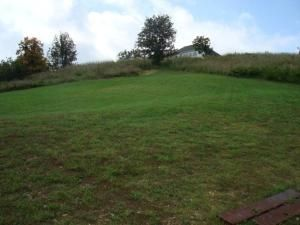 Lot 50 L 50 Whitetail Dr., Walnut Shade, MO 65771 Photo 1