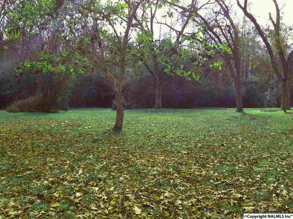 7503 Hwy. 36, Laceys Spring, AL 35754 Photo 6