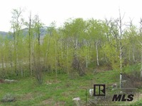 Home for sale: 576 Steamboat Blvd., Steamboat Springs, CO 80487