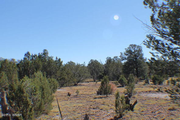 8 Acres Off Of Acr N. 3114, Vernon, AZ 85940 Photo 19
