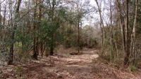 Home for sale: 00 County Rd. 643, Coffee Springs, AL 36318